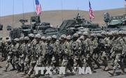 NATO bắt đầu cuộc tập trận Noble Partner 2018 tại Gruzia