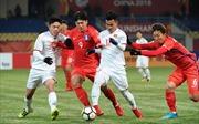 Trận tranh Cup liên khu vực Việt Nam - Hàn Quốc chưa thể tổ chức trong năm 2019