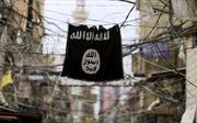 Tổn thất nặng, khủng bố IS ra hàng tại hang ổ cuối cùng ở đông Syria
