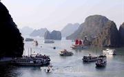 Tổng kiểm tra các tàu kinh doanh vận tải khách trên vịnh Hạ Long và Bái Tử Long