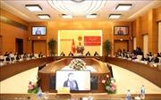 Phối hợp tham mưu, tổ chức thực hiện chính sách dân tộc tại các tỉnh phía Bắc