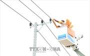 Triển khai sửa chữa điện hotline trên lưới 22kV