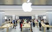Giới đầu tư vẫn lạc quan vào triển vọng lợi nhuận của Apple