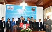 Doanh nghiệp Việt Nam hợp tác với Lào phòng chống dịch bệnh trong chăn nuôi
