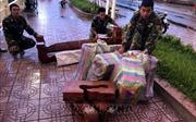 Chặn vụ buôn lậu bia, quần áo cũ và gỗ đã qua chế tác từ Campuchia về Việt Nam