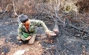 Chuyện về người hùng mở đường băng cản lửa cứu rừng