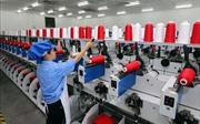 Việt Nam - vùng đất lành cho các tập đoàn lớn