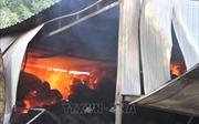 Hỏa hoạn thiêu rụi xưởng bao bì đựng điều, ước thiệt hại 800 triệu đồng