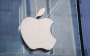 Apple có kế hoạch chuyển 20% công suất sản xuất từ Trung Quốc sang Ấn Độ