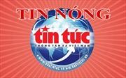 Yêu cầu 'đóng băng' một số công ty bất động sản tại Bình Thuận