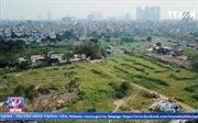 Nhộn nhịp rao bán đất nông nghiệp ở quận Thanh Xuân (Hà Nội)