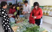 Đưa măng tây Lào Cai đến người tiêu dùng Thủ đô