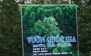 Nhiều dấu hiệu sai phạm tại Vườn Quốc gia Mũi Cà Mau