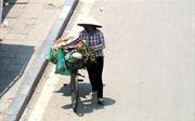 Thời tiết ngày 16/7: Nắng nóng mở rộng ra các tỉnh phía Đông Bắc Bộ