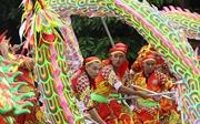 15 đội tranh tài trong Liên hoan Múa rồng Hà Nội 2019