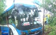 Phú Yên: Xe khách lao xuống ruộng, hành khách hoảng sợ
