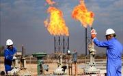 Giá dầu thô tăng cao cản trở đà tăng trưởng kinh tế toàn cầu