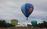 Mãn nhãn lễ hội khinh khí cầu Canberra