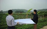 Tổ chức di dân vùng ảnh hưởng môi trường bãi rác Nam Sơn