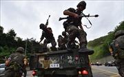 Truyền thông Triều Tiên chỉ trích các cuộc tập trận chung Mỹ - Hàn