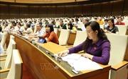 Đại biểu kỳ vọng các Bộ trưởng trả lời thẳng vào những vấn đề cử tri quan tâm