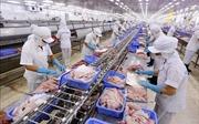 Giới doanh nghiệp EU hy vọng EVFTA sớm được phê chuẩn