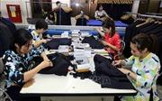 Xuất khẩu dệt may sang Nhật Bản: Tạo dựng thương hiệu bằng chất lượng