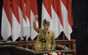 Nhiệm kỳ không trải hoa hồng của Tổng thống Joko Widodo