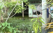 Cụm dân cư vượt lũ ở Kiên Giang sẽ không còn cảnh 'sống chung với lũ'