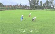 Thủ tướng đồng ý chuyển đổi mục đích sử dụng đất tại tỉnh Phú Thọ