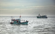 Khắc phục 'thẻ vàng' IUU: Nâng cao nhận thức cho ngư dân trong khai thác thủy sản