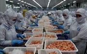 Mở thị trường xuất khẩu thủy sản - Bài cuối: Xây dựng thương hiệu