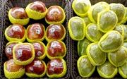 Trung Quốc quyết tâm loại bỏ đồ nhựa dùng một lần