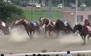 Ban'ei – Cuộc đua ngựa chậm nhất hành tinh