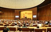 Thông cáo số 15, Kỳ họp thứ 7, Quốc hội khóa XIV