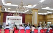 Agribank nỗ lực để dòng vốn chảy vào nông nghiệp sạch, nông nghiệp công nghệ cao