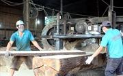 Hoa Kỳ - thị trường xuất nhập khẩu gỗ quan trọng của Việt Nam