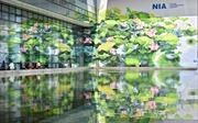 Sân bay Quốc tế Nội Bài lung linh đầm sen tuyệt đẹp