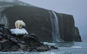Cơ hội mong manh để cứu Trái Đất trước thảm họa biến đổi khí hậu