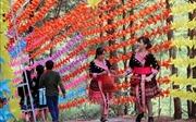 Khu du lịch sinh thái đồi thông điểm du lịch hấp dẫn của đồng Mông
