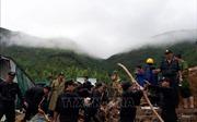 12 người chết, 11 người bị thương và 5 người mất tích do hoàn lưu bão số 8