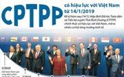 CPTPP có hiệu lực với Việt Nam từ 14/1/2019