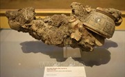 Khai mạc Trưng bày 'Bí mật đại dương từ những con tàu cổ'
