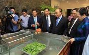 Thủ tướng dự hội nghị tổng kết 10 năm nông thôn mới ở Hải Phòng