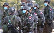 Tổng thống Hàn Quốc nhấn mạnh tăng cường tiềm lực quốc phòng