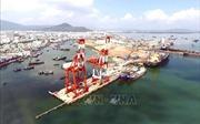 Kiến nghị thu hồi lại Cảng Quy Nhơn - Bài 5: Thứ trưởng Bộ Giao thông Vận tải lên tiếng