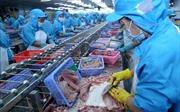 Nhiều giải pháp cho ngành cá tra
