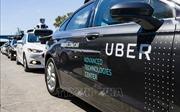 Doanh thu tăng mạnh, Uber vẫn lỗ nặng