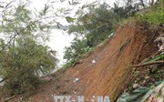 Quảng Trị: Sạt lở bờ sông diễn biến phức tạp hơn sau mưa lớn