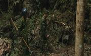 Ước vọng xanh trên miền đá lạnh - Bài cuối: Chung sức 'hồi sinh' vùng đất chết